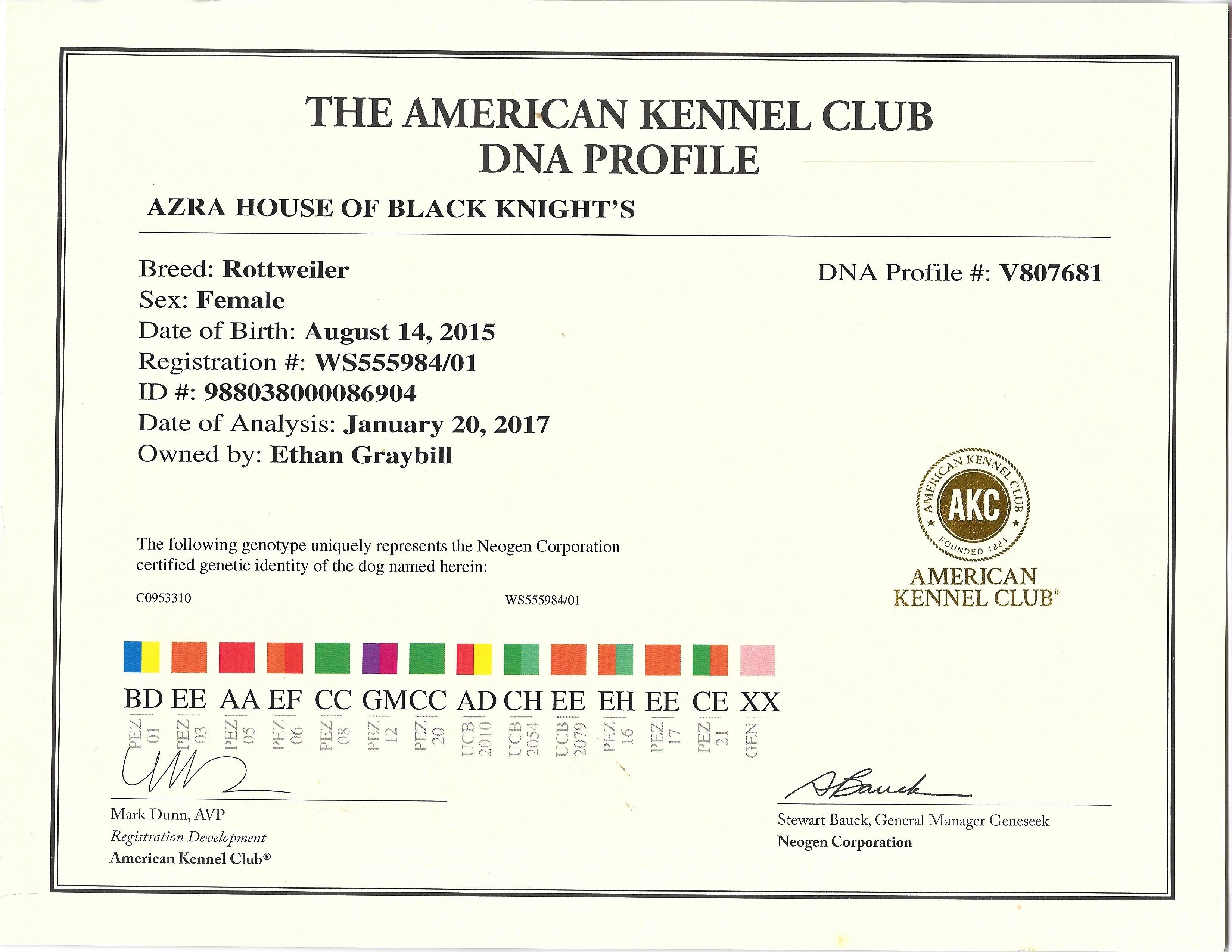 Azra DNA Profile # V807681