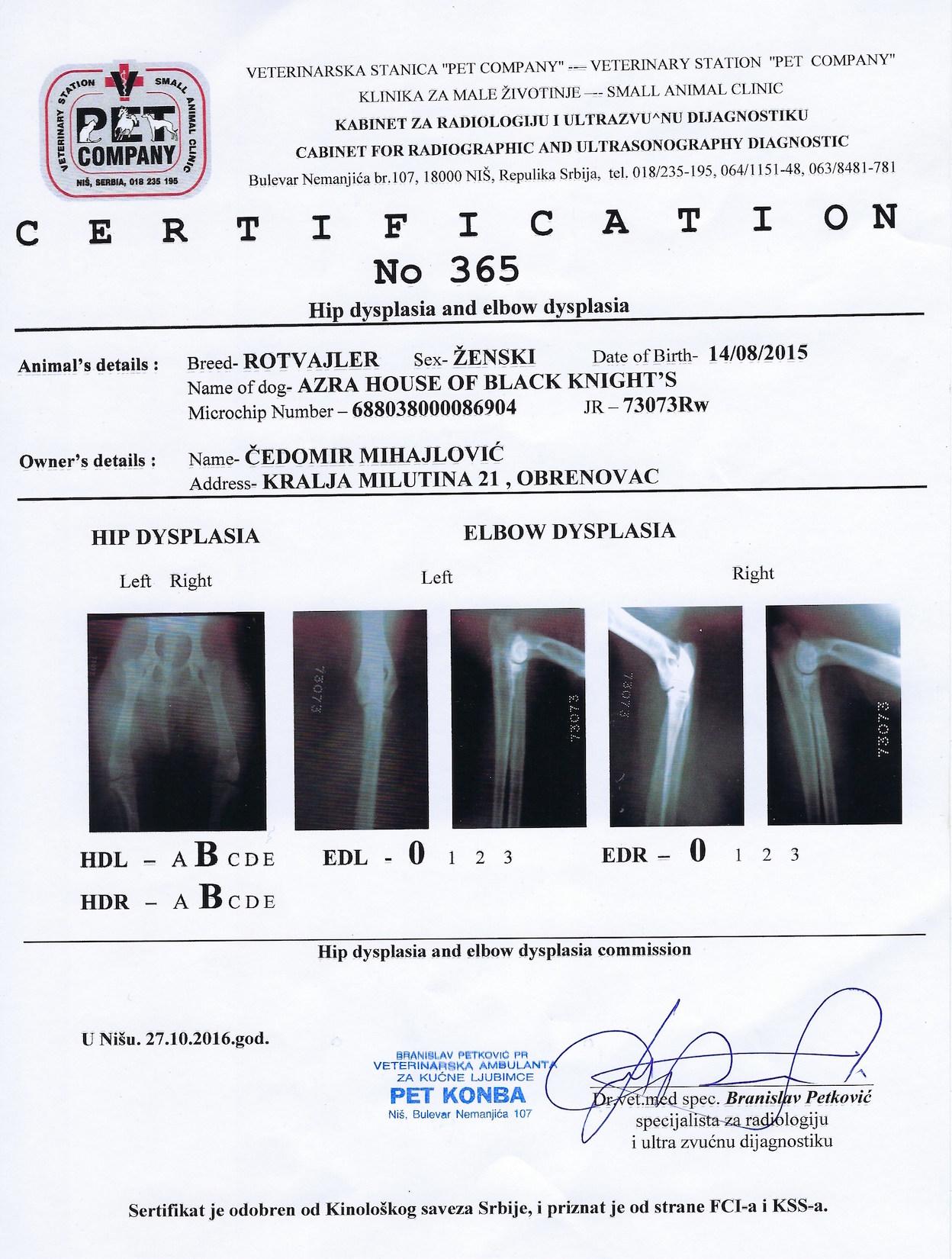 Azra, Hip Dysplasia and Elbow Dysplasia Certification, No 365