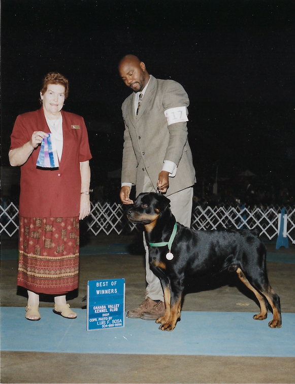 Marcus, Best of Winners, Cahaba Valley Kennel Club 2001